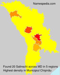 Familiennamen Salinschi - Moldova