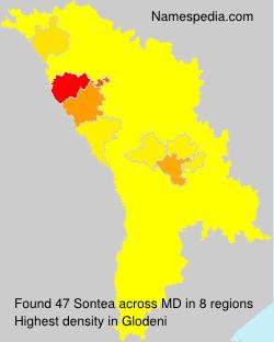 Sontea