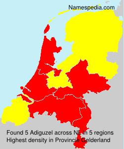 Surname Adiguzel in Netherlands