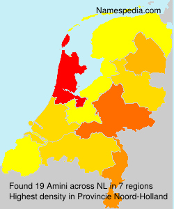 Surname Amini in Netherlands