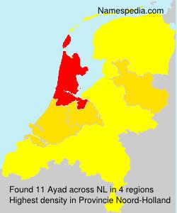 Ayad - Netherlands