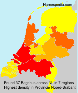 Surname Bagchus in Netherlands