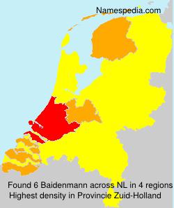 Baidenmann