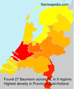 Surname Baumann in Netherlands