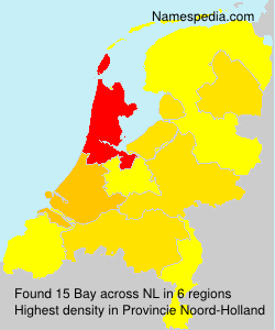 Surname Bay in Netherlands