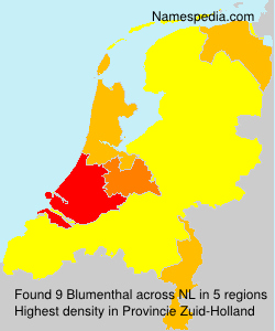 Familiennamen Blumenthal - Netherlands