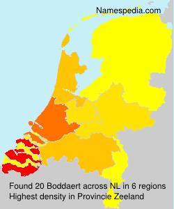 Surname Boddaert in Netherlands