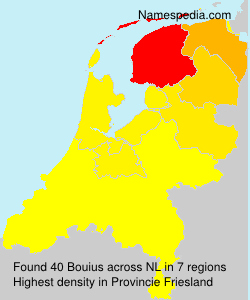 Surname Bouius in Netherlands