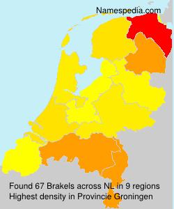 Brakels