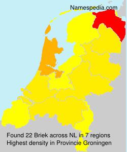Surname Briek in Netherlands