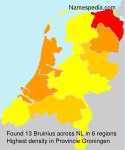 Bruinius
