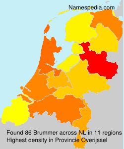 Brummer - Netherlands