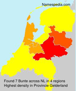 Familiennamen Bunte - Netherlands