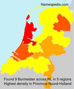 Burmeister