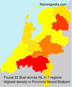 Surname Bust in Netherlands