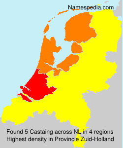 Surname Castaing in Netherlands