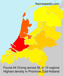 Surname Chong in Netherlands