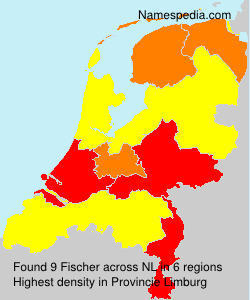 Surname Fischer in Netherlands