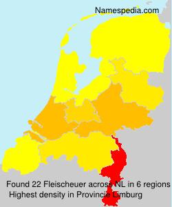 Familiennamen Fleischeuer - Netherlands