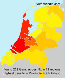 Gans - Netherlands