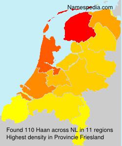 Familiennamen Haan - Netherlands