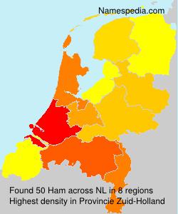 Familiennamen Ham - Netherlands