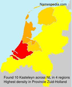 Surname Kasteleyn in Netherlands