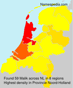 Surname Malik in Netherlands