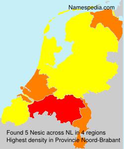 Nesic - Netherlands