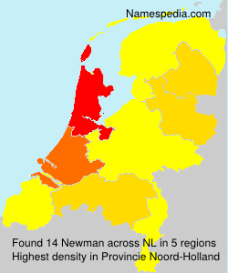 Surname Newman in Netherlands