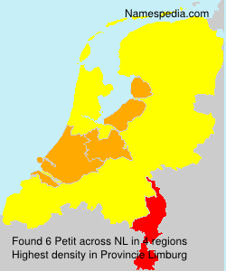 Surname Petit in Netherlands