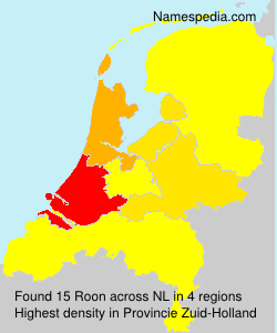 Surname Roon in Netherlands