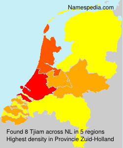 Surname Tjiam in Netherlands