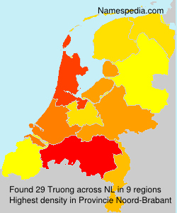 Surname Truong in Netherlands