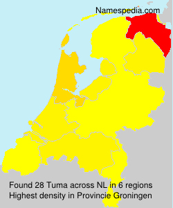 Surname Tuma in Netherlands