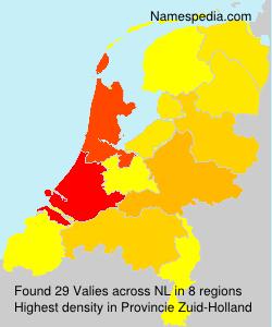 Surname Valies in Netherlands