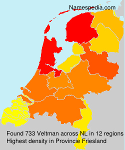 Surname Veltman in Netherlands