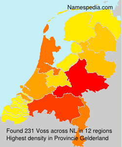Familiennamen Voss - Netherlands