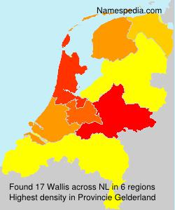 Surname Wallis in Netherlands