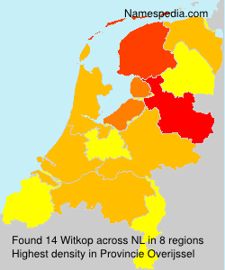 Surname Witkop in Netherlands