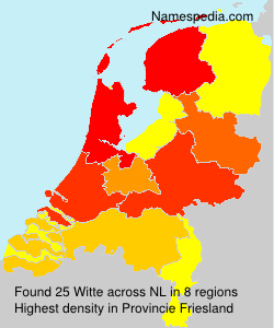 Surname Witte in Netherlands