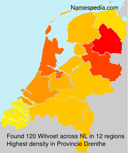 Surname Witvoet in Netherlands