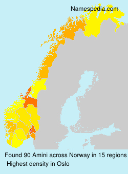 Surname Amini in Norway