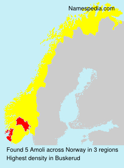 Surname Amoli in Norway