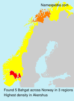 Surname Bahgat in Norway