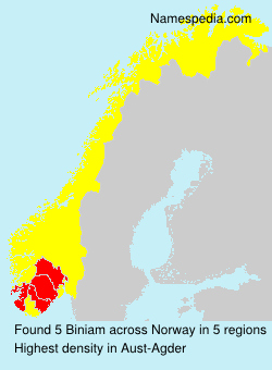 Surname Biniam in Norway