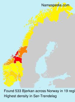 Surname Bjerkan in Norway