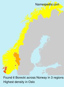 Surname Borecki in Norway