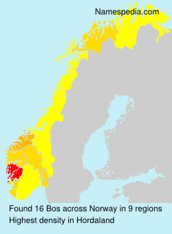 Surname Bos in Norway