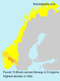 Surname Brock in Norway